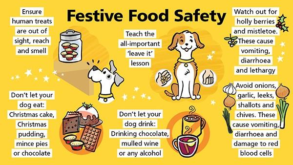 Festive food safety